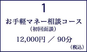 お手軽マネー相談コース(初回面談 90分 )/12000円(税込み)
